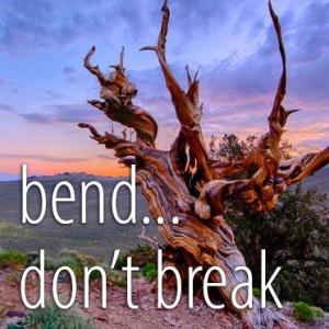 bend… don't break