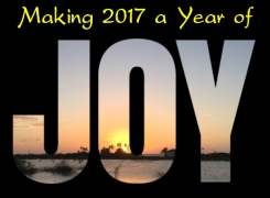 Making 2017 a Year of JOY